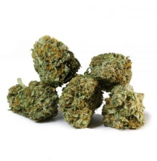 GREEN CANDY SATIVA